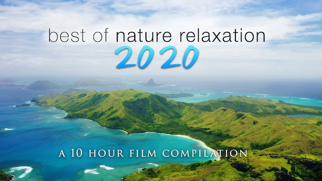 Best of Nature Relaxation 2020 - 10 Hour Compilation Filmed in 4K UHD