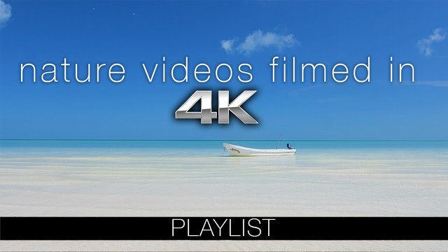 Nature Videos Filmed in 4K UHD