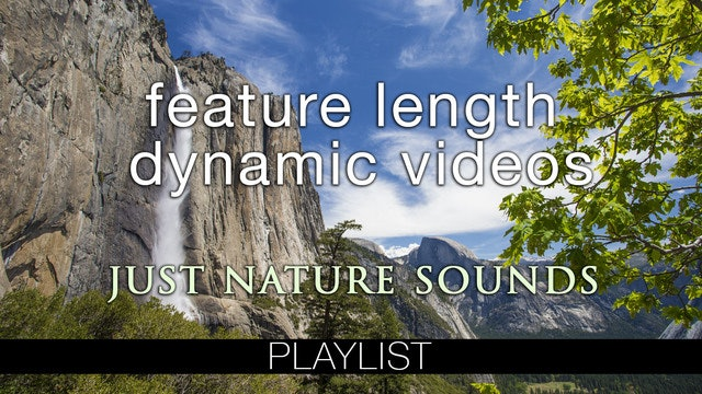 Feature Length Dynamic Vids (Nature Sounds Only)