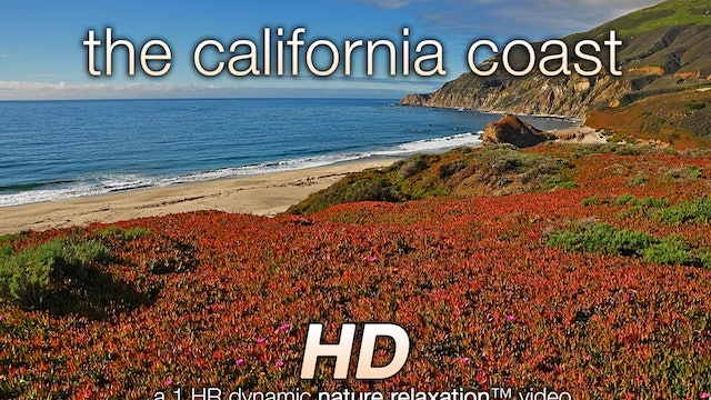 The California Coast (Music Version) 1 HR Dynamic Video