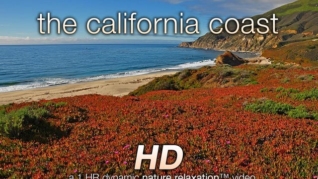 The California Coast (Nature Sounds) 1 HR Dynamic