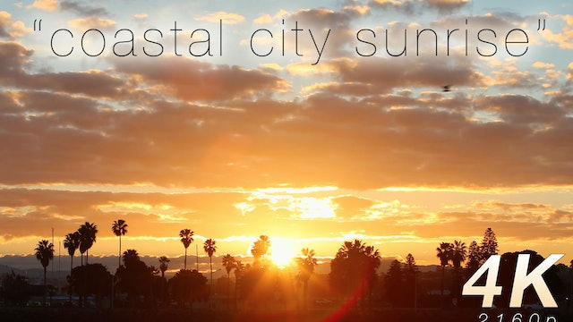 Coastal City Sunrise 20 Minute Nature Video HD