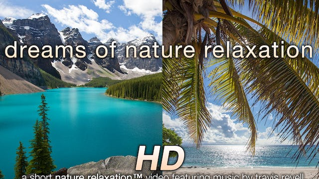 Dreams of Nature Relaxation Short Music Video ft Travis Revell