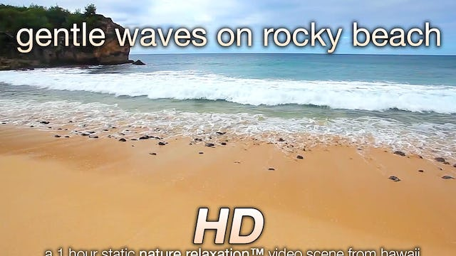 Gentle Waves on Rocky Beach 1 Hr Nature Relaxation Video 1080p
