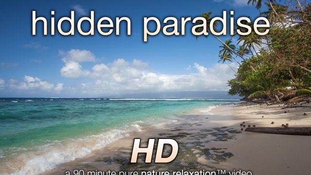 Hidden Paradise 90 Minute Dynamic Nature Relaxation Video