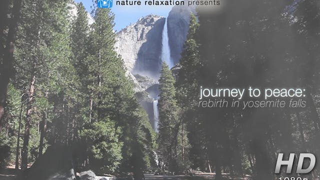 Journey to Peace: Rebirth in Yosemite...