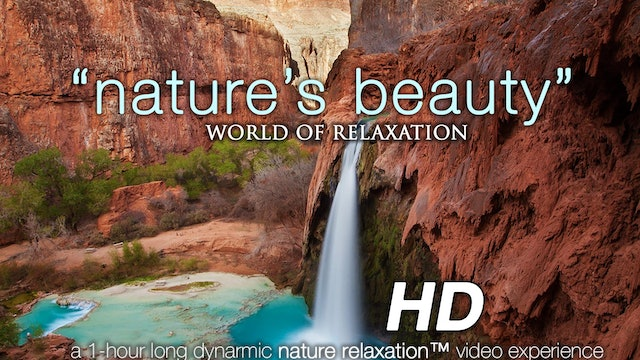 Nature's Beauty 1 HR Dynamic Nature Relaxation Video w Music