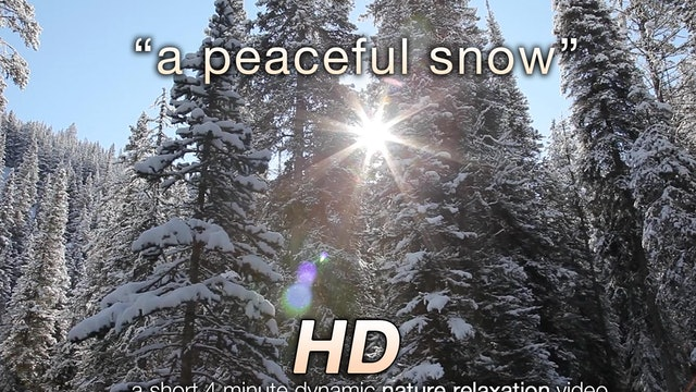 A Peaceful Snow Short 4 MIN Winter Music Video HD 1080p