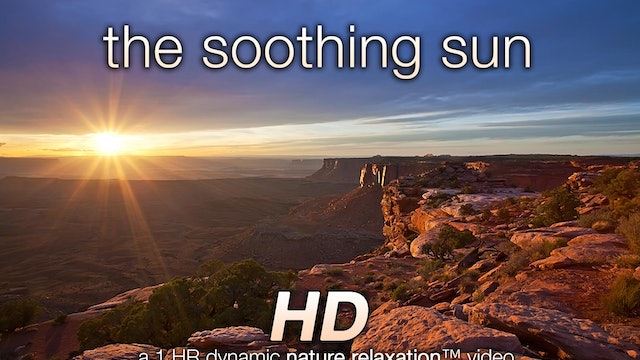 The Soothing Sun (Nature Sounds) 1 HR Dynamic Video