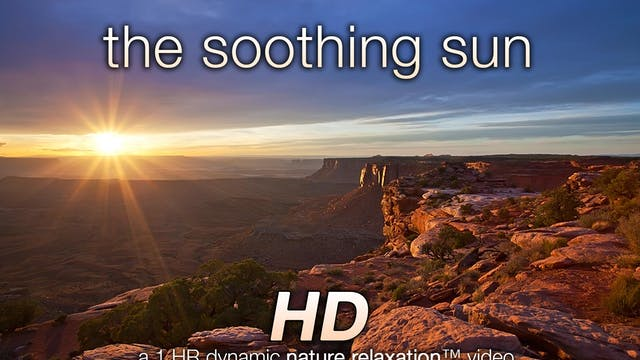 The Soothing Sun (Nature Sounds) 1 HR...