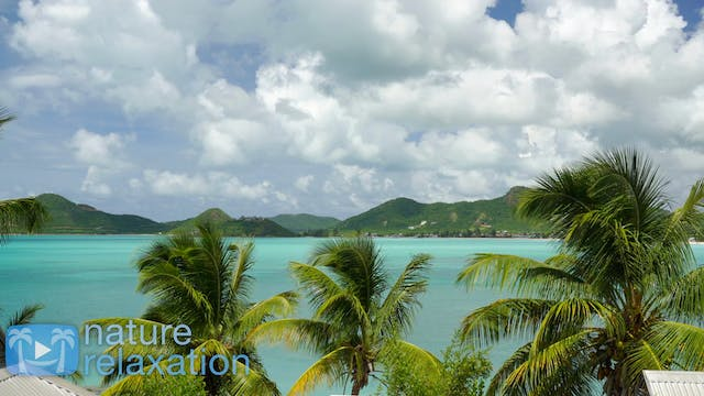 Tropical Lagoon Vista 4K Nature Relax...