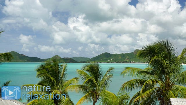 Tropical Lagoon Vista 4K Nature Relaxation
