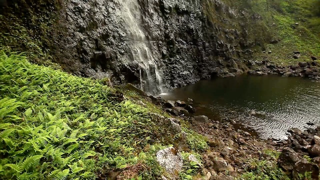 Mystical Falls 1 HR Static Nature Video