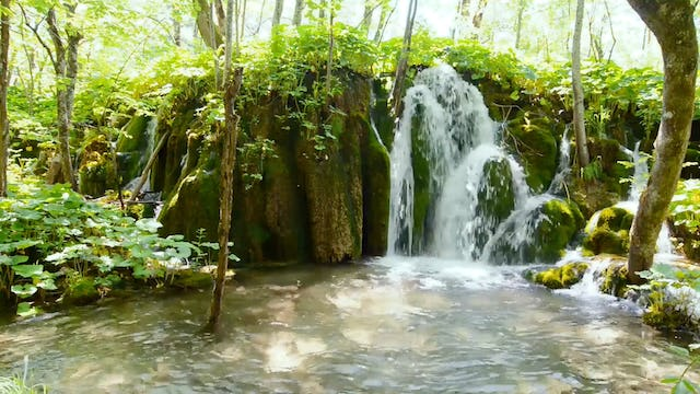 Waterfall Paradise: Plitvice Lakes, Croatia 1 HR Dynamic Video
