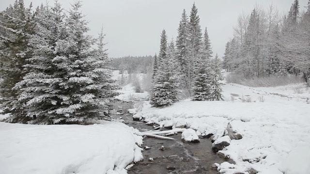 Mountain Snowstorm 1080p