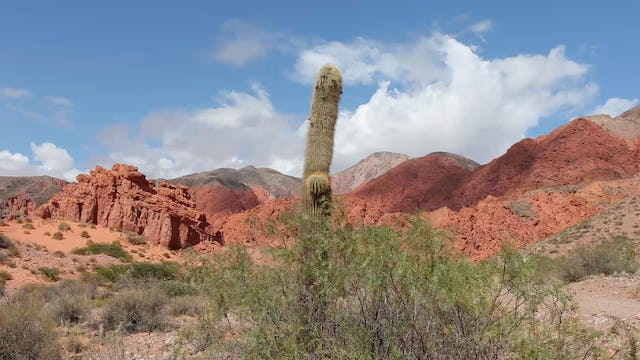 Red Rock Canyon Winds 1 HR Static Nature Relaxation Scene from Argentina 4K
