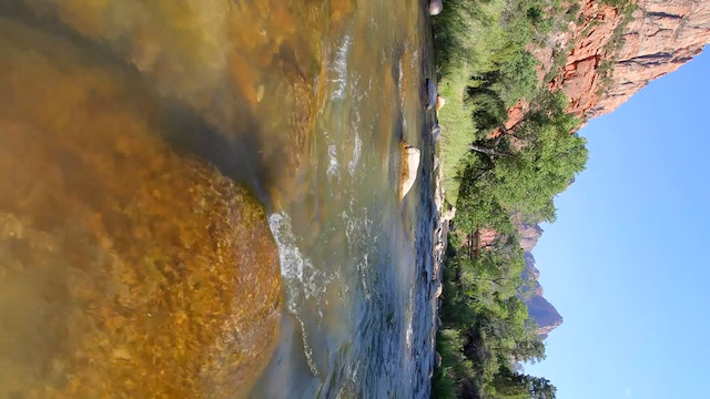 Vertical Video: Zion's Virgin River F...