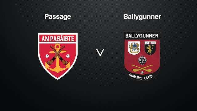WATERFORD SHC Final, Passage v Ballygunner
