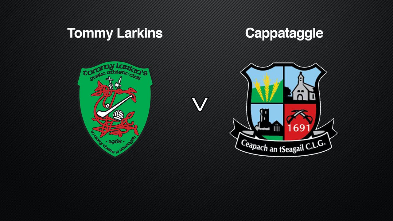 GALWAY Brooks SHC Tommy Larkins v Cappataggle
