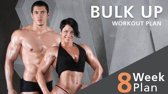 8 Week Bulk Up