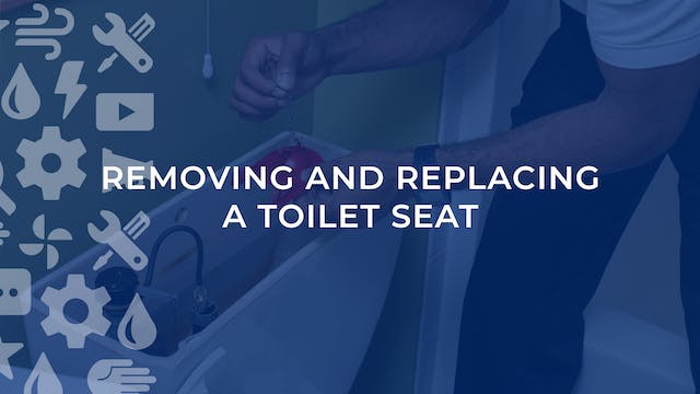 Remove and Replace A Toilet Seat