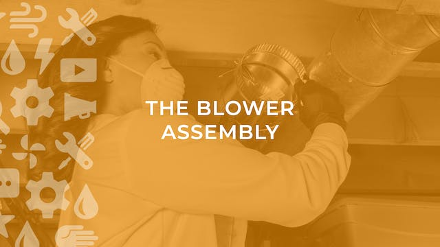 The Blower Assembly