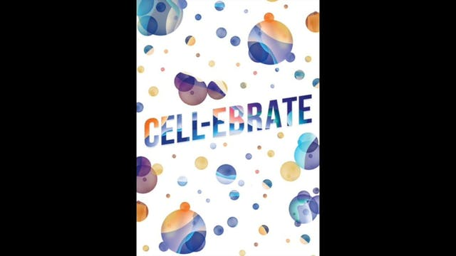 CELL-ebrate - 6. Greasy Beat (Funk Bo...