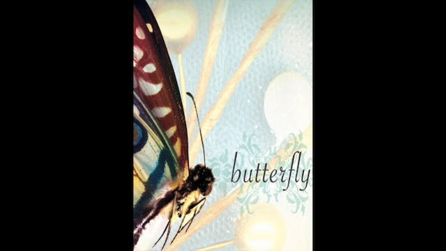 Butterfly - 8. On The Inside
