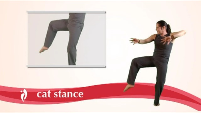 Day 14 - Move: Move the Move (52 Moves)