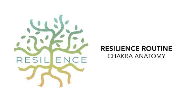 RESILIENCE Routine - 4. Chakra Anatomy