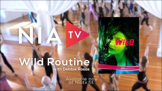 Wild - Routine - Promo