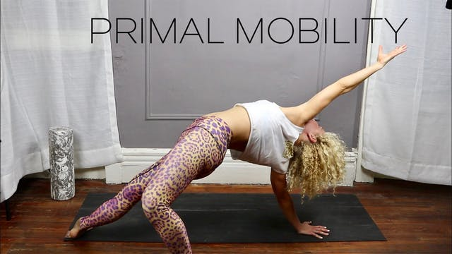 Primal Mobility