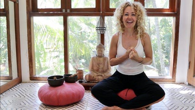 Meditation: Input : Output