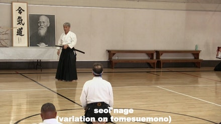 Nishikaze Aikido Society Video
