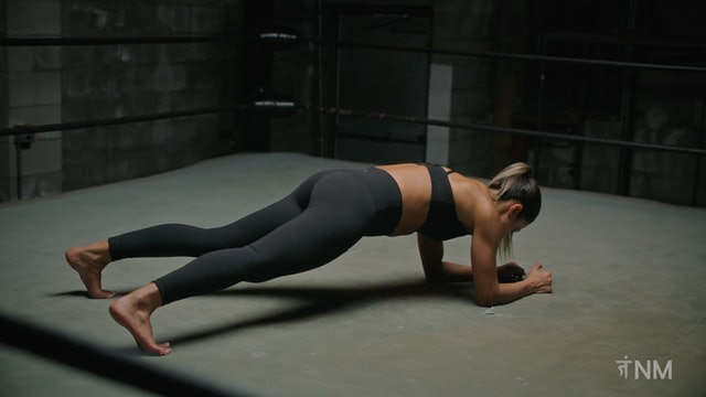 Plank Walk and Shoulder Touch