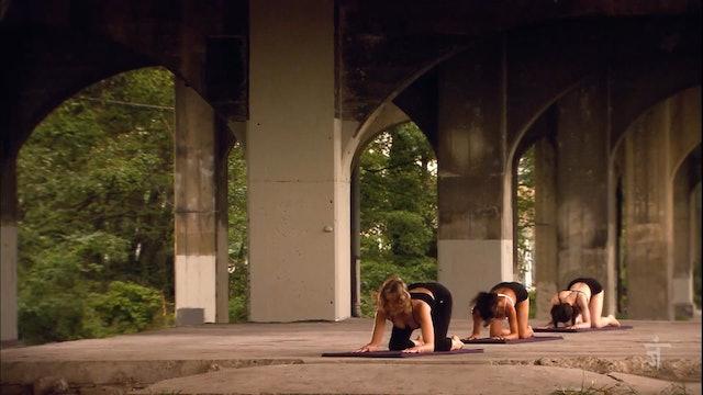 Episode 207 - Extended Leg Balancing