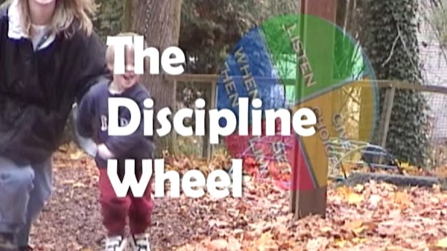 The Discipline Wheel