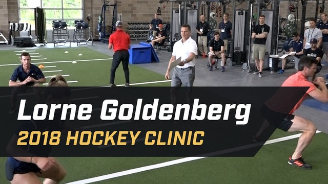 Considerations for Speed, Agility and Movement in Ice Hockey