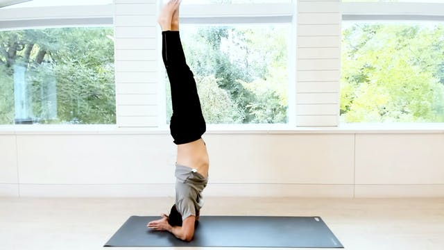 O2 Quick Tip | Pincha Mayurasana with...