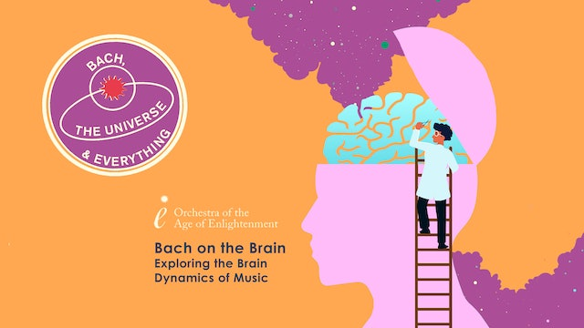 Bach on the Brain: Exploring the Brain Dynamics of Music