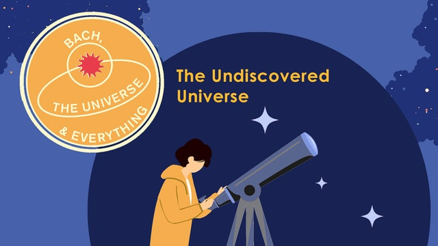 The Undiscovered Universe