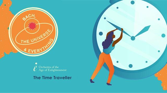 The Time Traveller Programmer