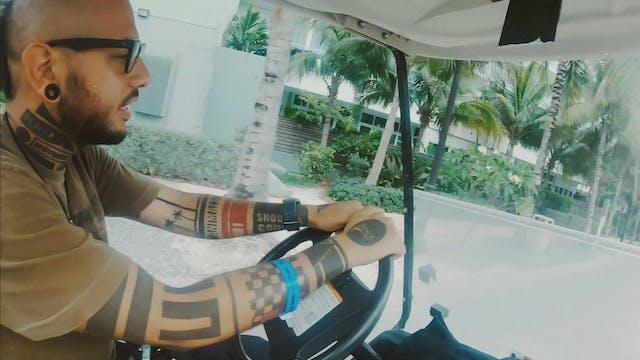 BEHIND THE JUNGLE Bahamas - Animal Daze