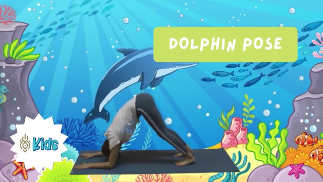 How To Practice Dolphin Pose | An OM Warrior Kids Yoga Pose Tutorial