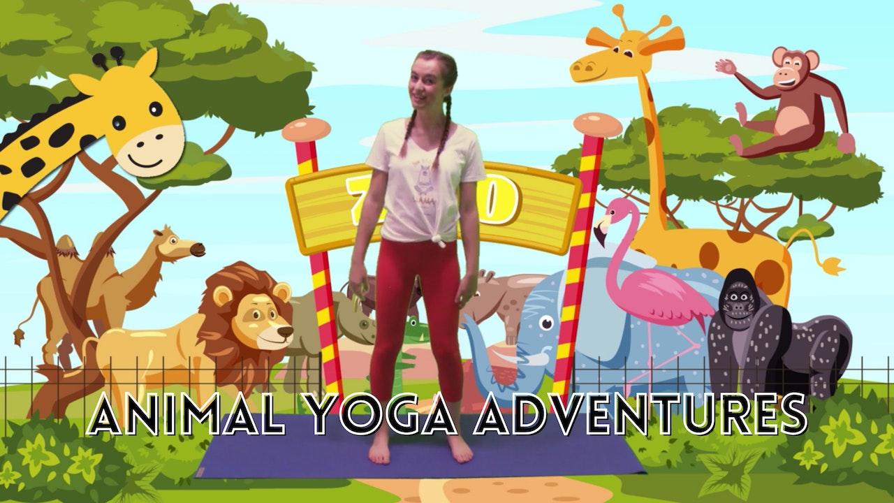 Animal Yoga 🐕🐬🦓🦒🐘