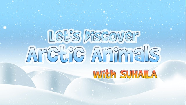 Zaky Discovers Arctic Animals