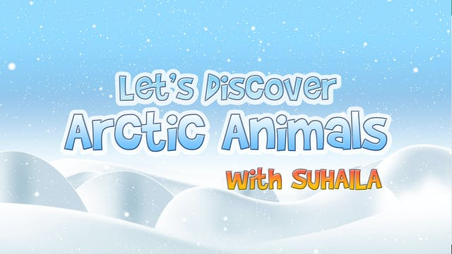 Zaky Discovers Arctic Animals