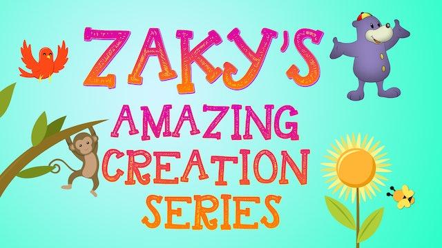 Zaky's Amazing Creation Series