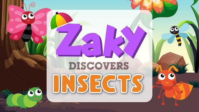 Zaky Discovers Insects