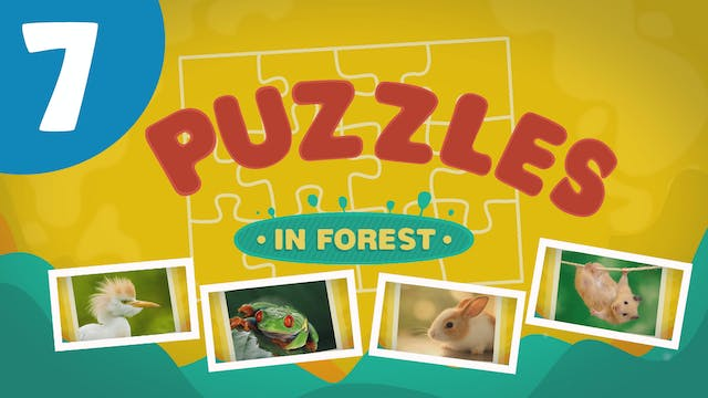 Puzzles in the Forest (ep7) Let's try...